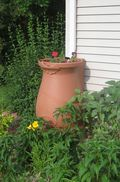 New_rain_barrel