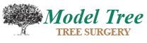 Model Tree